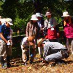 球根、観葉植物の管理 まちのガーデナー講座