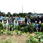 暮らしに活きる楽らく野菜作り講座 「畑見回りと初収穫編」