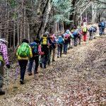 トレッキング講座 第十回野外学習「丸山トレッキング」報告