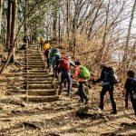 トレッキング講座 第十一回野外学習 『宝登山・卒業トレッキング』